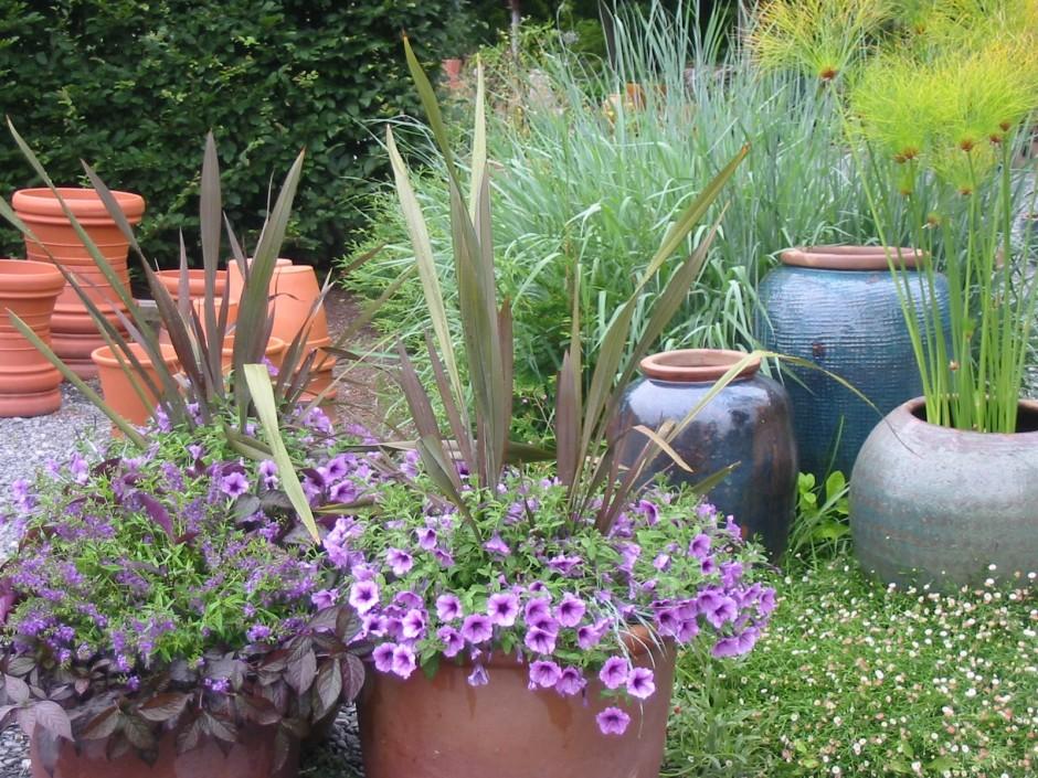 Hyland pots glazed earthenware in nursery hyland garden for Garden pots portland