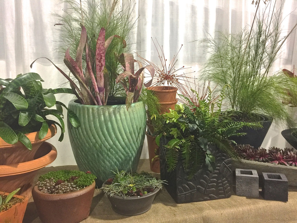 Home hyland garden design for Garden pots portland